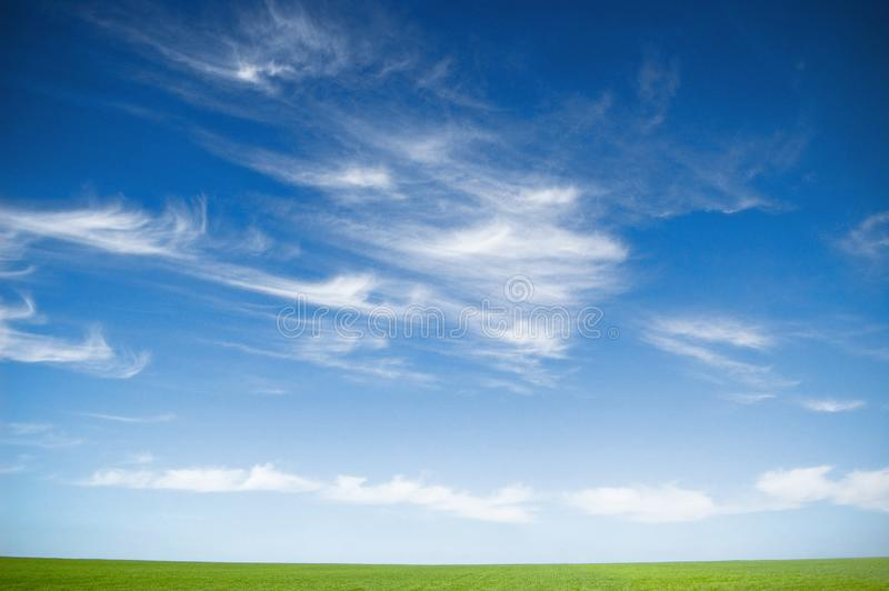 Cloudy Sky And Grass Free Stock Photo