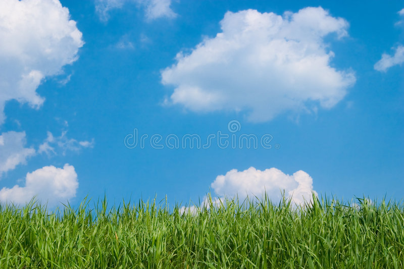 Cloudy sky and green meadow royalty free stock photography
