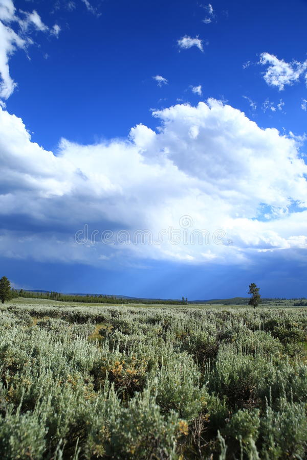 Cloudy sky with meadow stock photo