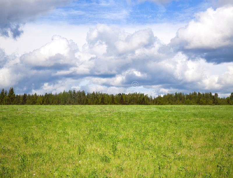 Download Cloudy Sky Over Bright Green Meadow Stock Image - Image: 25881795