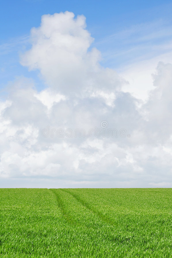 Download Cloudy sky over farmland stock photo. Image of agriculture - 5229486
