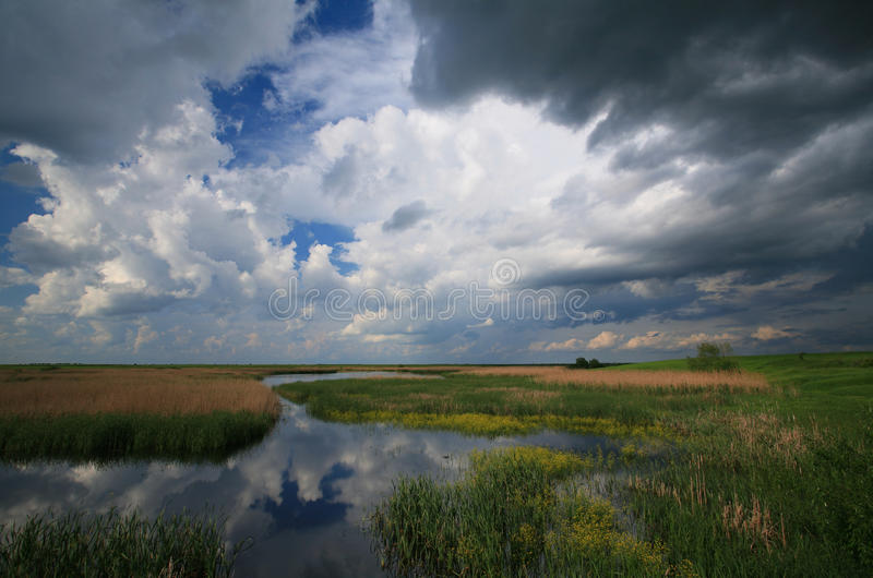 Download Cloudy sky over marshes stock image. Image of green, summer - 14352389