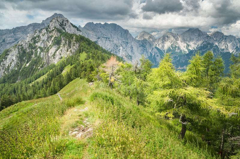 Cloudy Stormy Weather in the Alps. Cloudy stormy weather in the Slovenian Alps. View of the trees and mountains on the peak of Strelovec in the Logar Valley royalty free stock images
