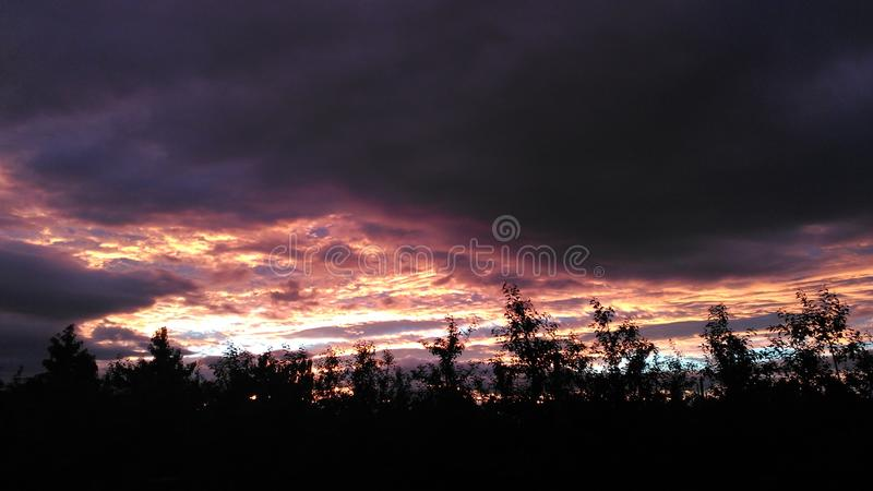 Cloudy sunset in apple orchard stock photos