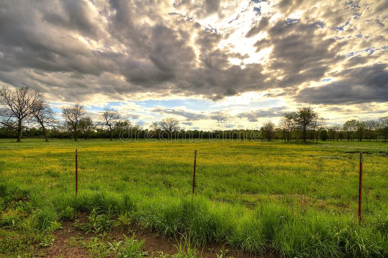 Cloudy Sunset Over Yellow Flowered Field. Cloudy sunset over yellow flowered country field with a barbed wire fence stock photo