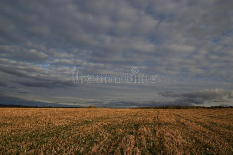 Cloudy weather and clouds, sloping rye field. After harvesting royalty free stock image
