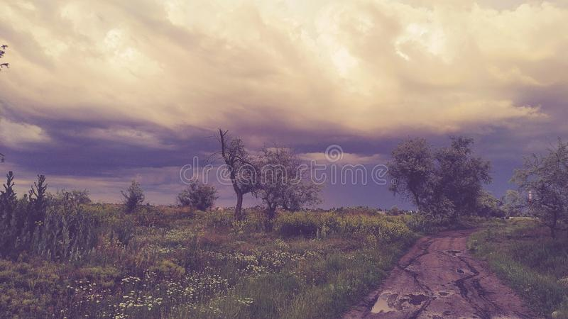 Cloudy weather on the feilds. Of Kherson, South of Ukraine royalty free stock photo