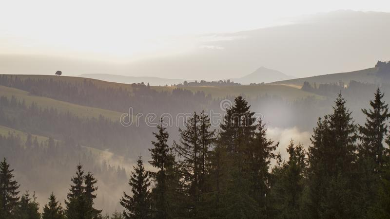 Cloudy weather in the Ukrainian Carpathians, fog rises from the forest.  royalty free stock photography
