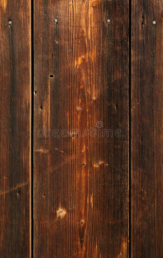 Download Clout nail in plank stock photo. Image of desk, carpentry - 11665434