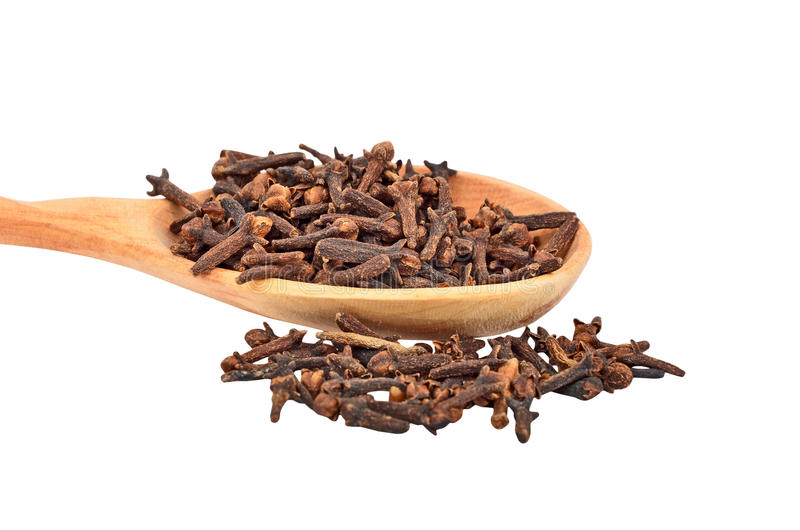 Clove in wooden spoon royalty free stock image
