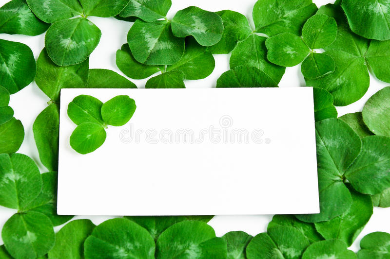 Download Clover background stock photo. Image of leaves, abstract - 18594814