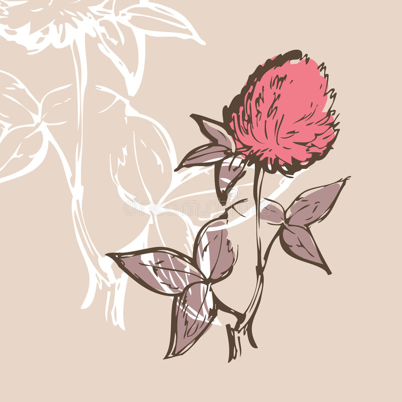 Clover flower royalty free illustration