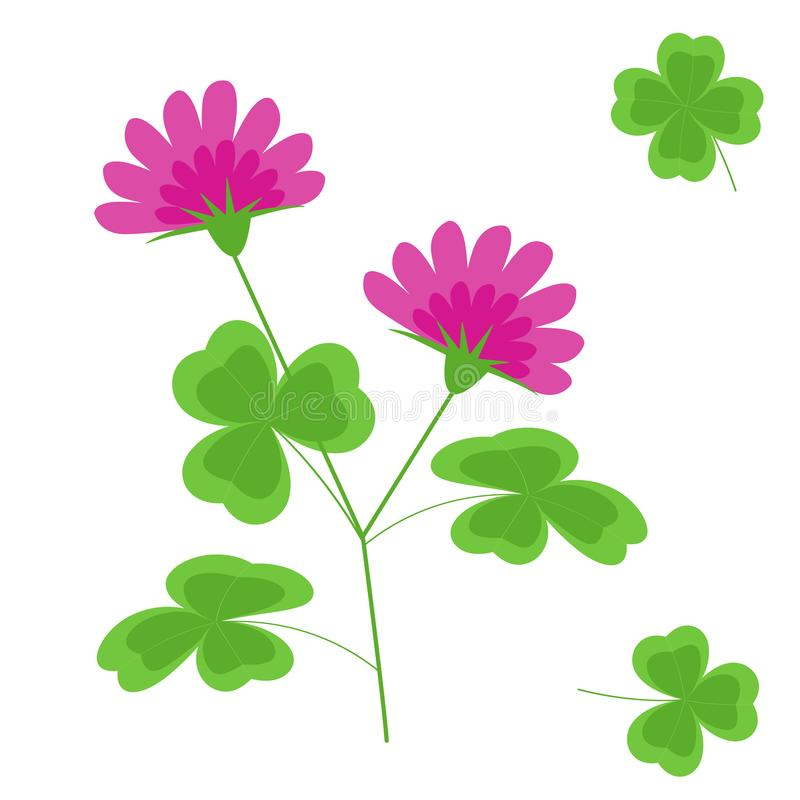 Clover with flowers flat vector isolated image on white background. stock images