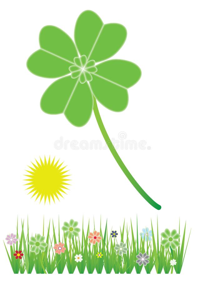 Clover and grass with flowers vector illustration