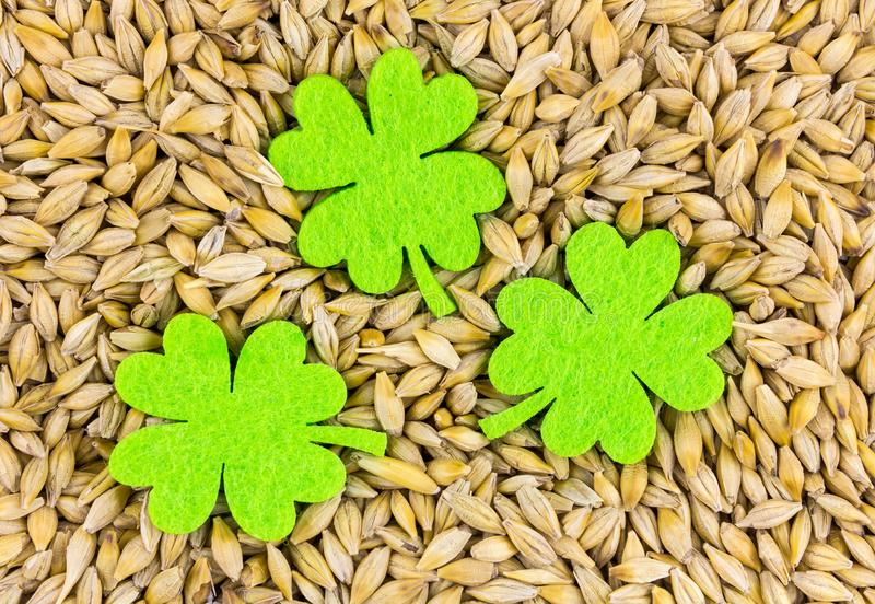Clover icon holiday symbol spring day holy patrick of felt on natural background seed millet base for brewing royalty free stock image