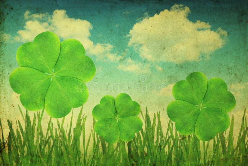 Clover leaf. Fresh dewy green grass with clover leaf. Vintage photo stock illustration