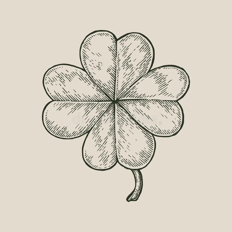 Clover leaf hand drawing vintage style isolate on white background. Happy and lucky day symbol vector illustration