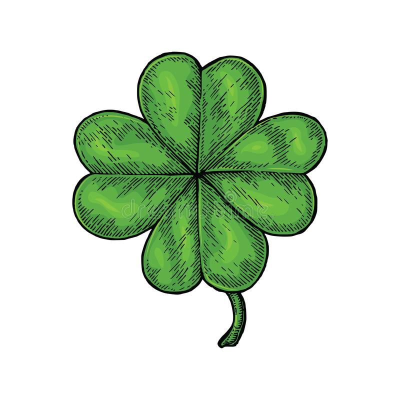 Clover leaf hand drawing vintage style isolate on white background. Happy and lucky day symbol royalty free illustration