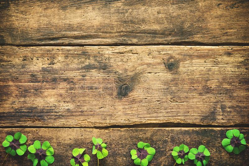 Lucky shamrock. St.Patrick`s day background royalty free stock photo