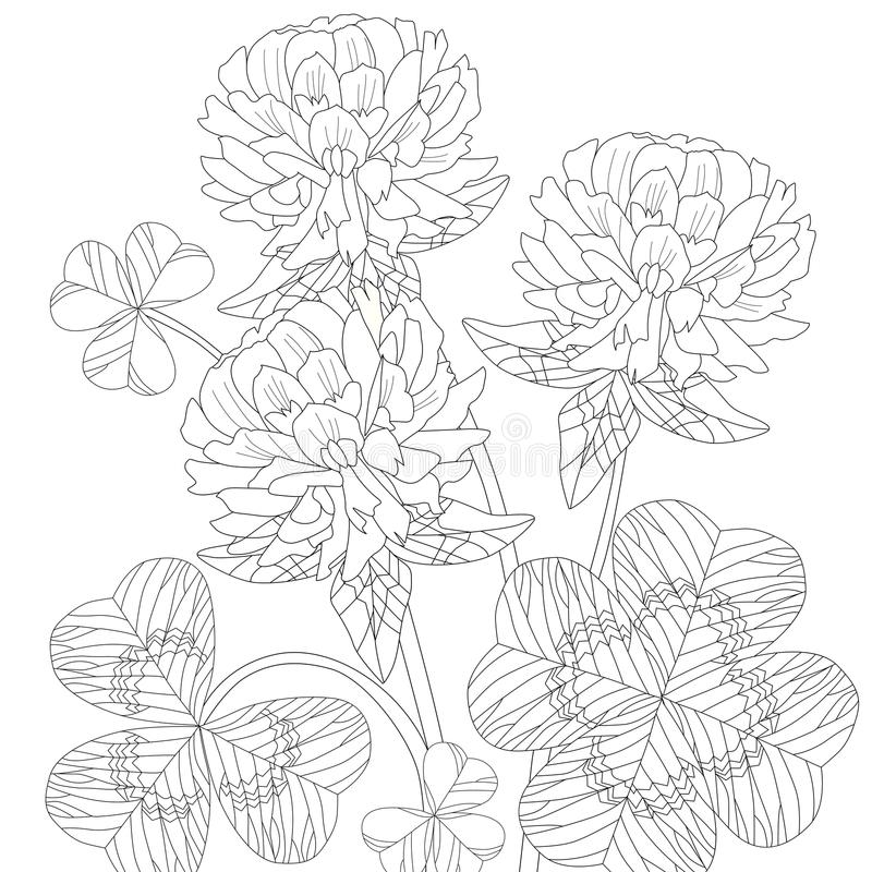 Zentangle stylized clover. Hand Drawn lace vector illustration stock illustration