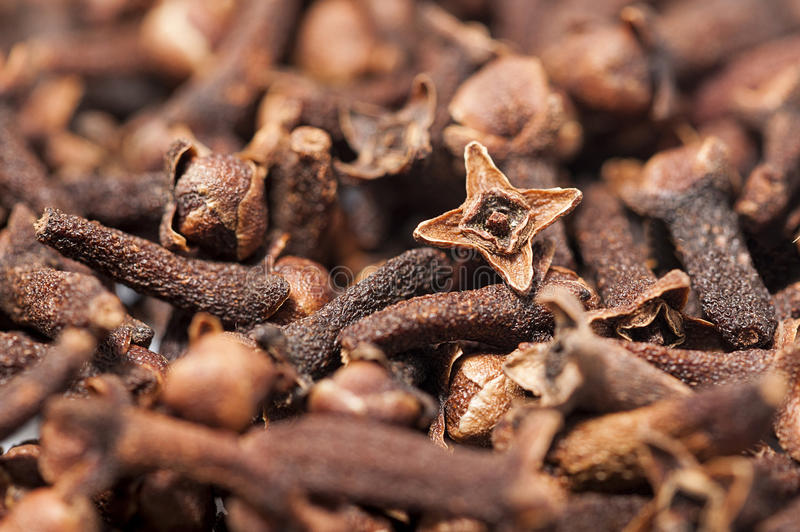Cloves fotografia royalty free