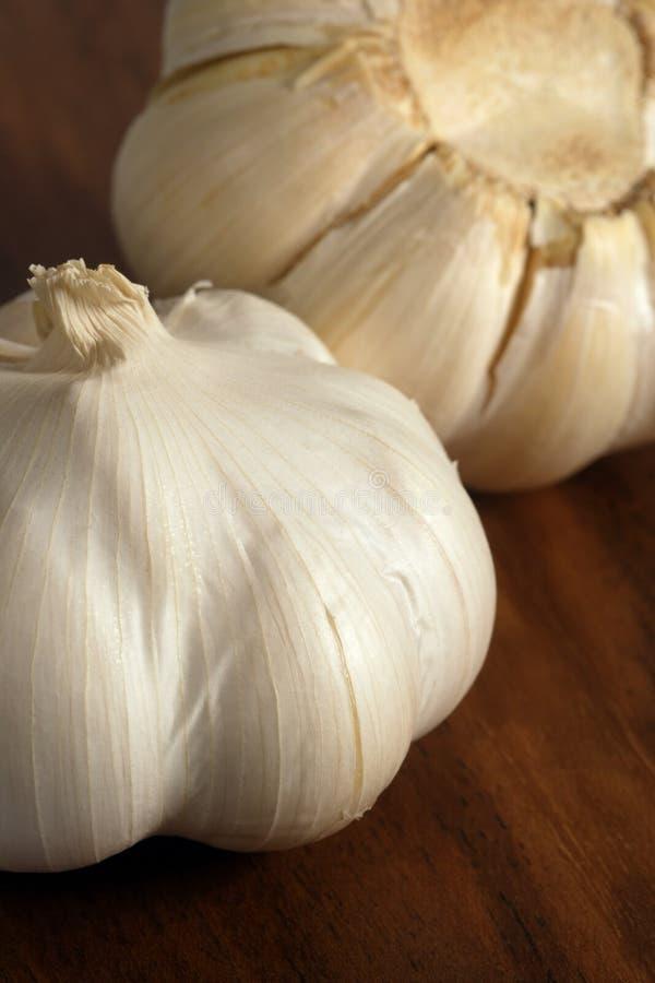 Cloves of garlic royalty free stock photo
