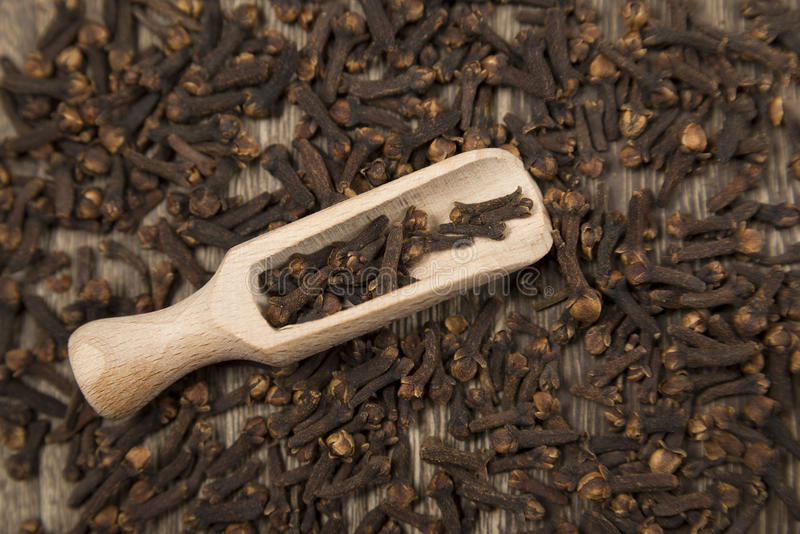 Cloves stock images