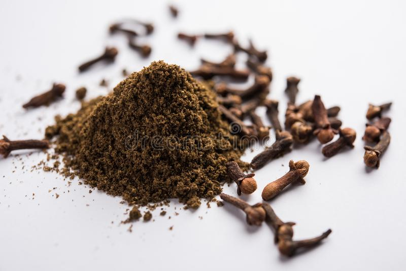 Cloves powder in a bowl isolated on white. Selective focus royalty free stock photo