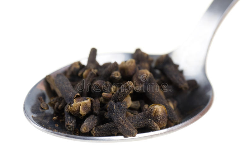 Download Cloves on a spoon stock photo. Image of ingredient, fresh - 25363740