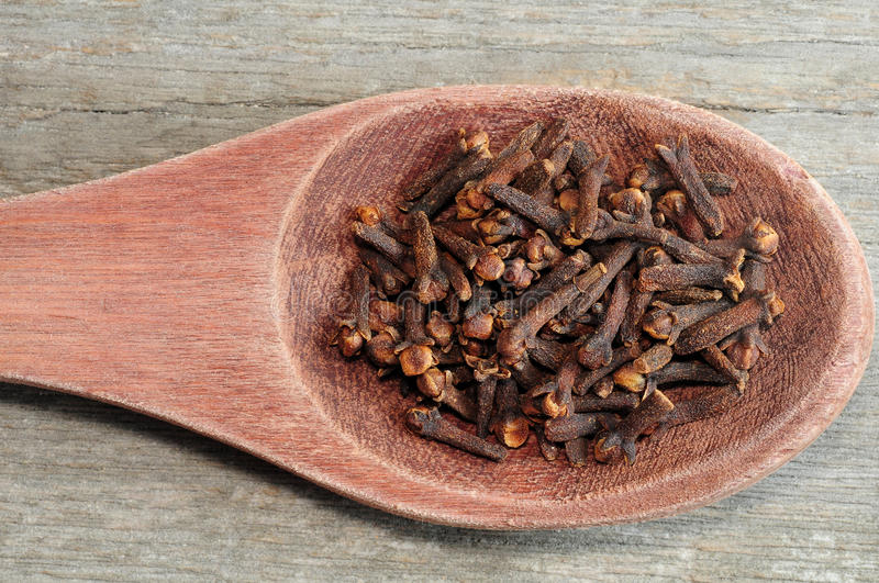 Cloves in wooden spoon royalty free stock photo