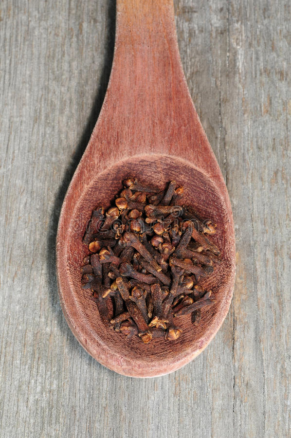 Cloves in wooden spoon stock image