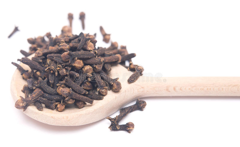 Cloves. On wooden spoon on white background royalty free stock photography