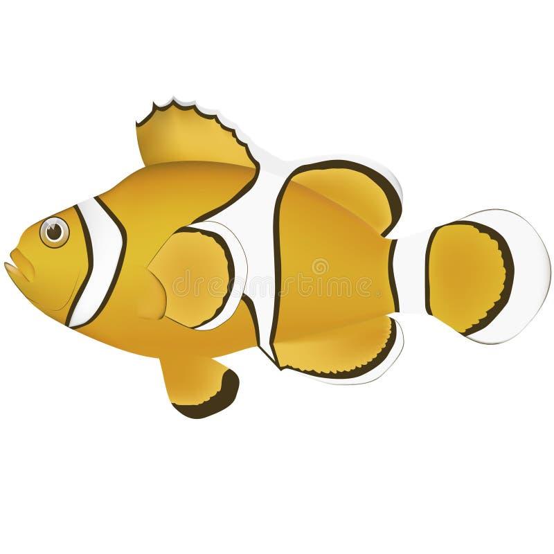 Clown Anemone Fish royalty-vrije illustratie