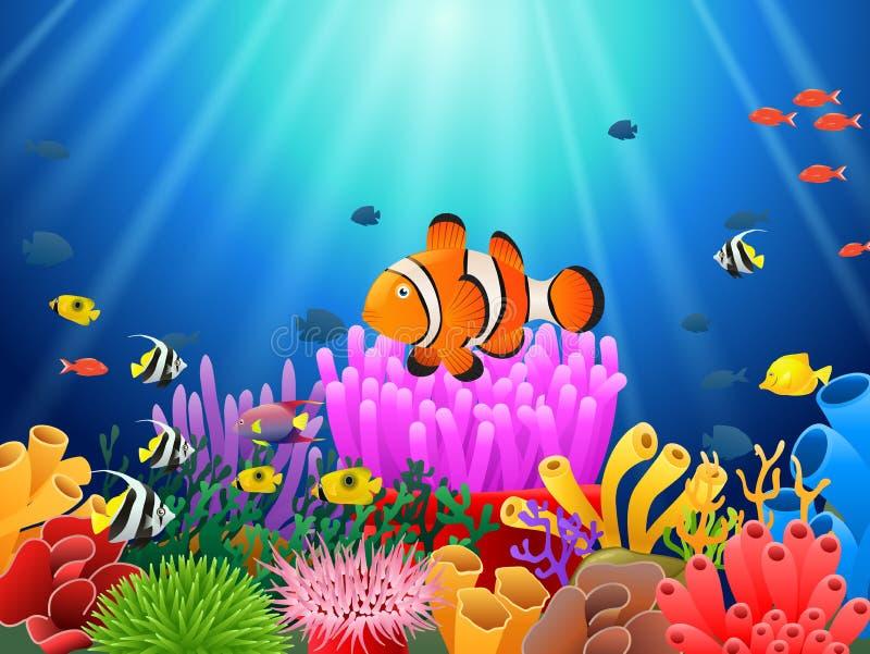 Clown fish under the sea vector illustration