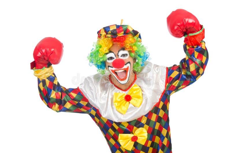 Clown med boxninghandskar arkivbild