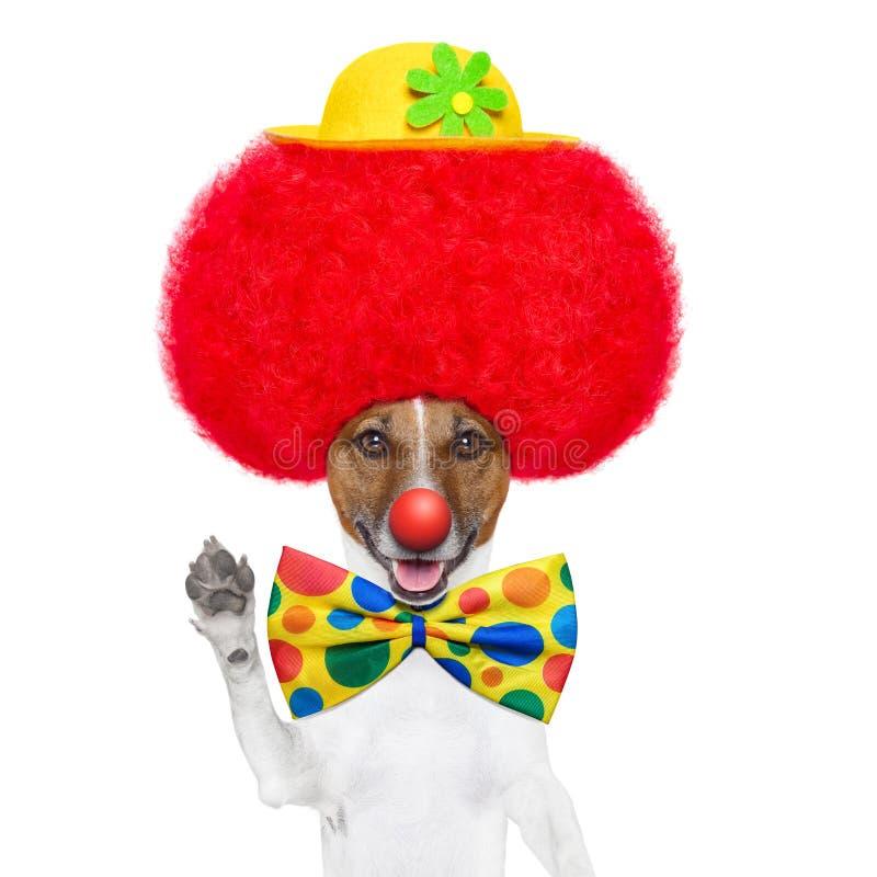 Clownen förföljer med den röda wigen och hatten royaltyfri fotografi