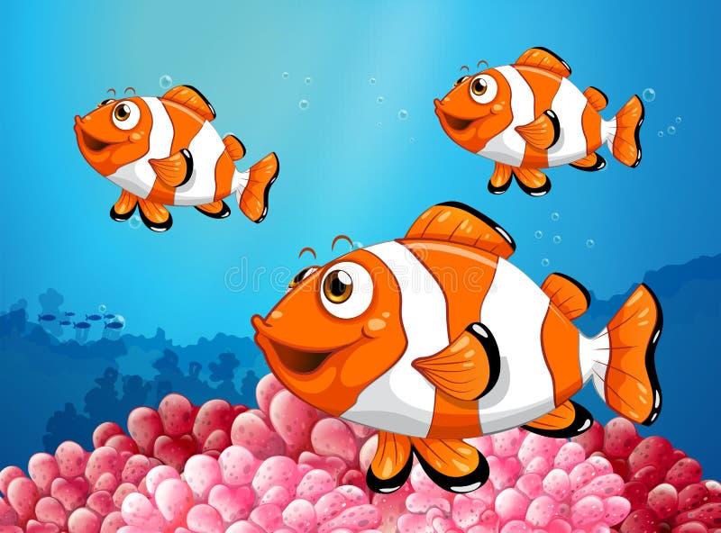 Clownfish drie onder de oceaan royalty-vrije illustratie