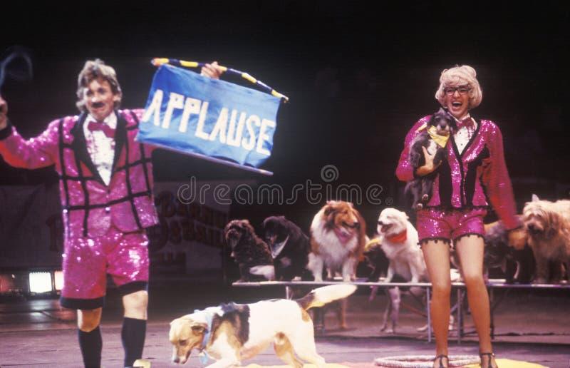 Clowns avec des chiens, des frères de Ringling et Barnum et Bailey Circus photographie stock libre de droits