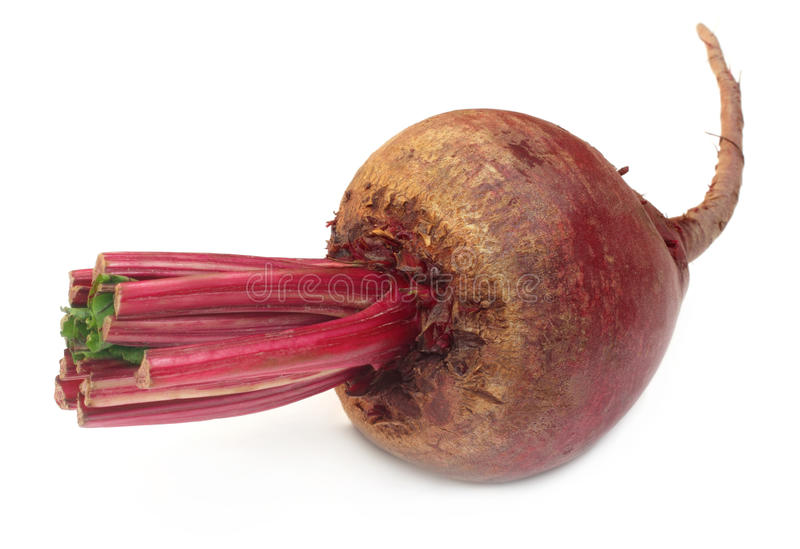 Fresh Beet over white background stock photography