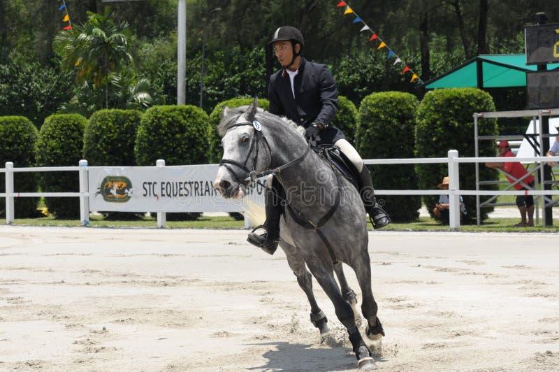 Club de gazon de Selangor de carnaval de cheval : Showjumping images stock