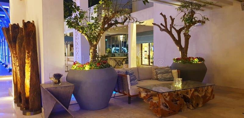 Garden. Club indoor outdoor night garden tree flowers pots luxery decor modern royalty free stock images