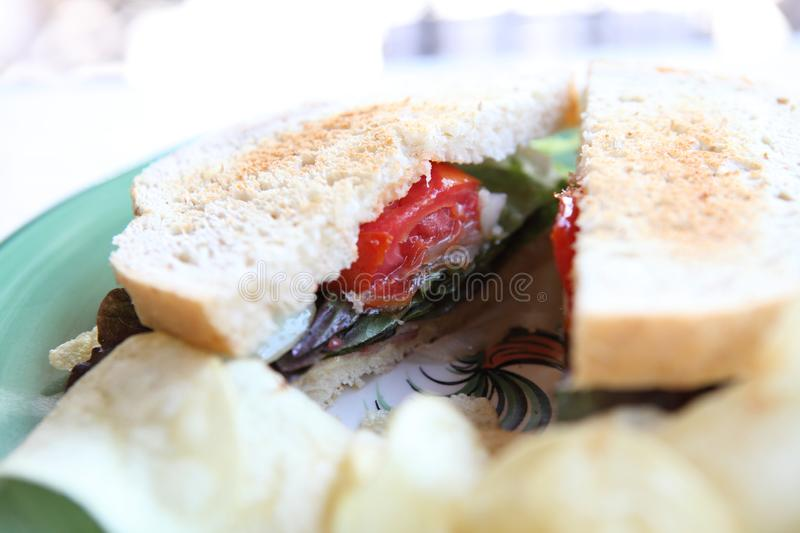 Club sandwich. In close up stock image