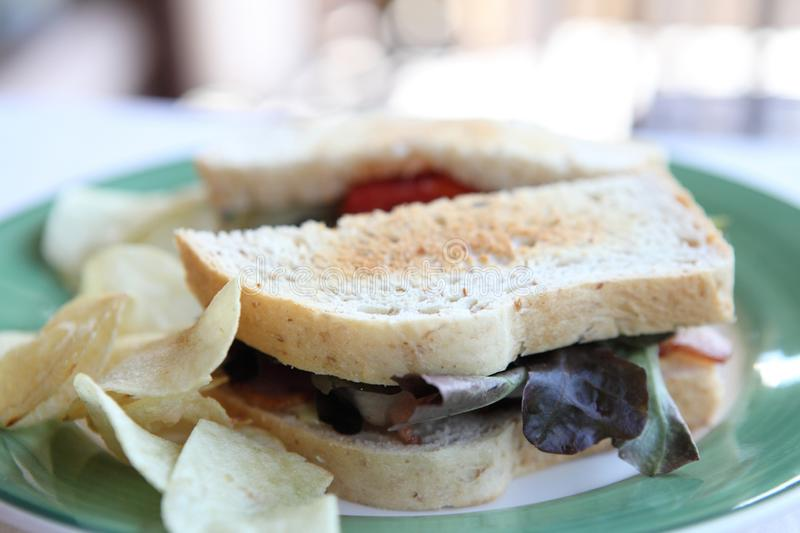 Club sandwich. On a plate in close up royalty free stock photo