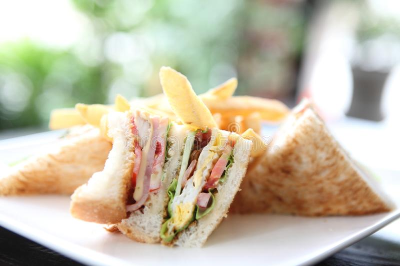 Club sandwich. On a plate in close up stock photo