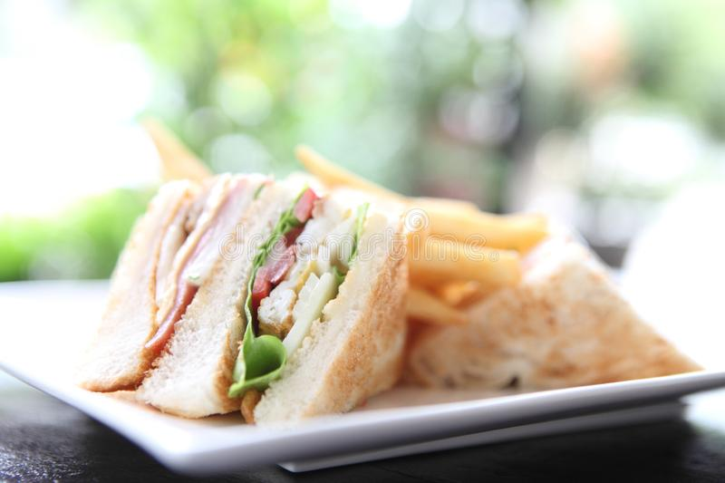 Club sandwich. On a plate in close up stock photos