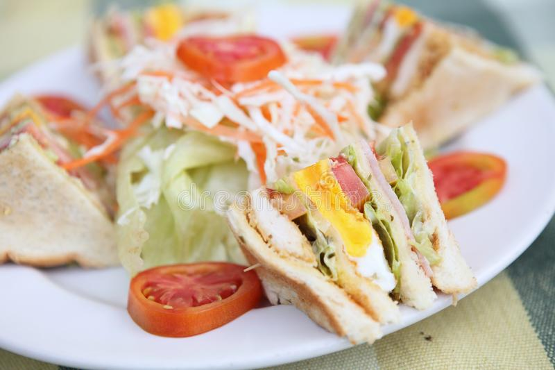 Club sandwich. On a plate stock photography