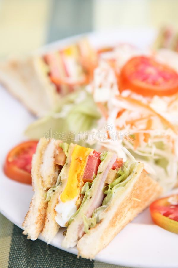 Club sandwich. In close up stock photography