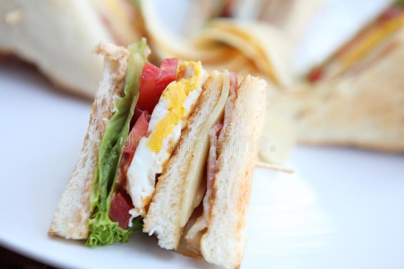 Club sandwich. In close up stock photo