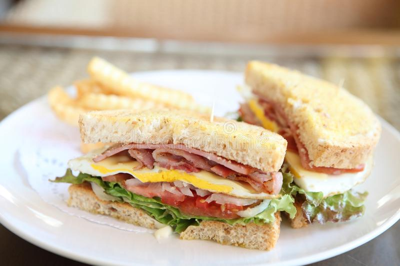 Club sandwich. On a plate royalty free stock photo