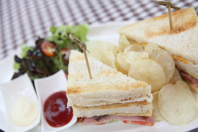 Club sandwich. On a plate royalty free stock photography